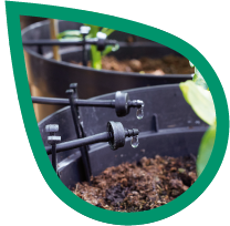 Irrigatia - drip irrigation systems
