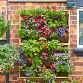 Irrigatia Vertical Picture Garden - living wall